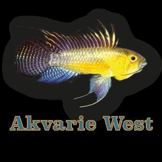 akvarieforretningen.dk logo