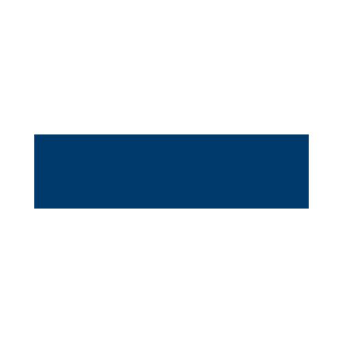 gowikings.dk logo