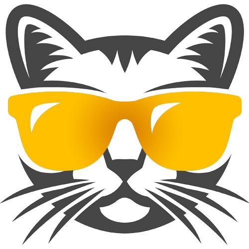 billigbrillen.dk logo