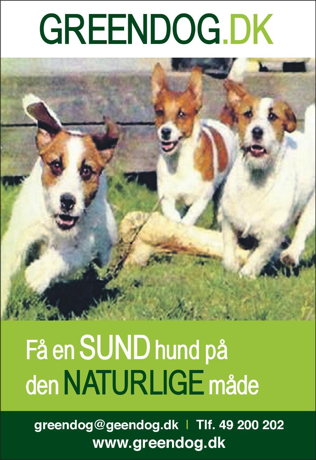 greendog.dk