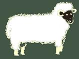 naturlig-beklaedning.dk logo